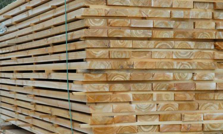 National Forest Product Western Red Cedar